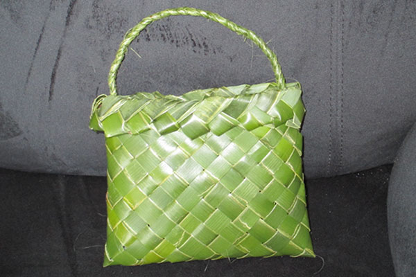 Tracy-Hurst-Porter-Fun-with-Flax-Making-a-Simple-Kete